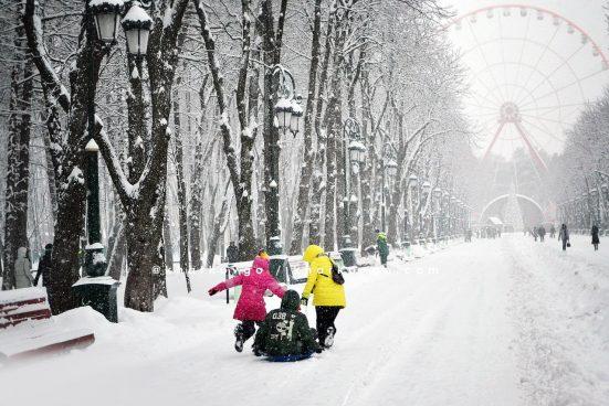 Зимняя экскурсия – интересные декабрьские выходные
